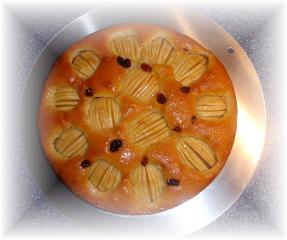 apfelkuchen mit rum rosinen