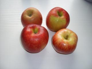 betrunkene Äpfel