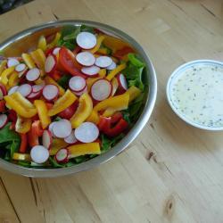 bunter salat mit grapefruit joghurt dressing