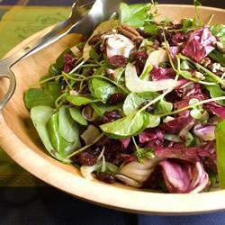 fenchel brunnenkresse salat mit cranberries