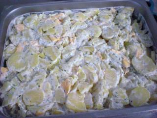 flämisches kartoffelgratin