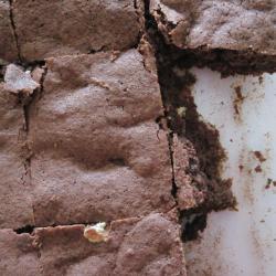 kinderleichte brownies