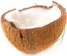 kokoseis low carb geeignet