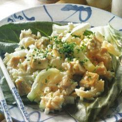 kokosnuss hühner salat