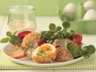 kresse eier