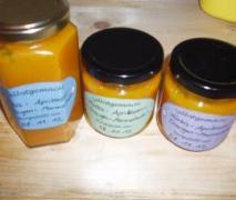kürbis aprikosen orangen marmelade