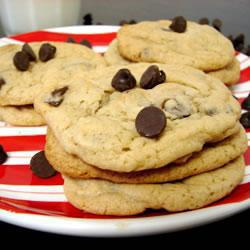 lockere chocolate chip cookies