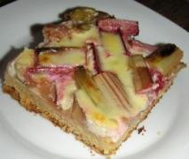 rhabarberkuchen mit quarkguss blech rezept d