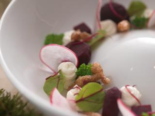rote bete salat mit snøfrisk