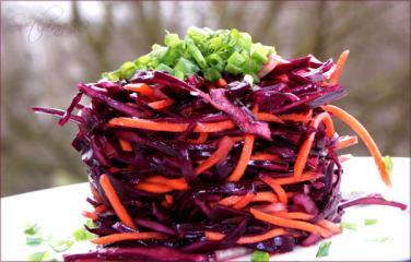 rotkohl salat mit karotten