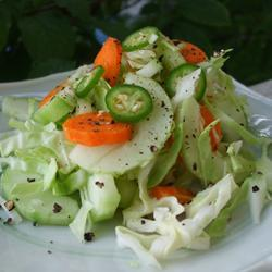 scharfer pak choi salat