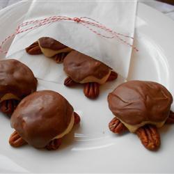 schildkröten kekse