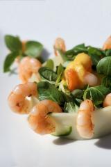 shrimps auf wildkräuter salat