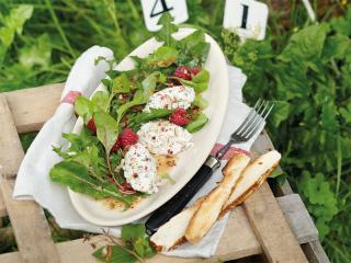ziegen obazda mit salat von jungem mangold